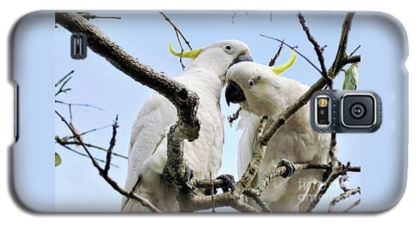 White Cockatoos Galaxy S5 Case