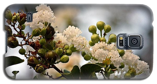 Galaxy S5 Case featuring the photograph White Crape Myrtle- Fine Art by KayeCee Spain