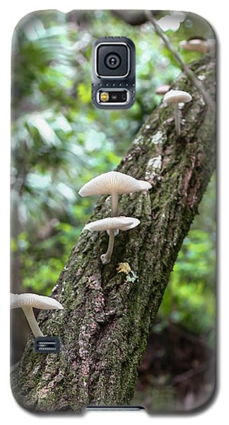White Deer Mushrooms Galaxy S5 Case