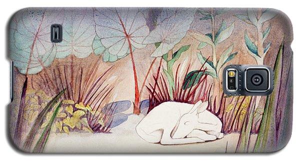 White Doe Dreaming Galaxy S5 Case