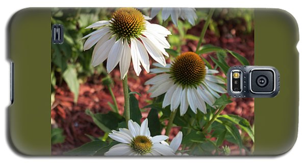 Galaxy S5 Case featuring the photograph White Echinacea by Suzanne Gaff