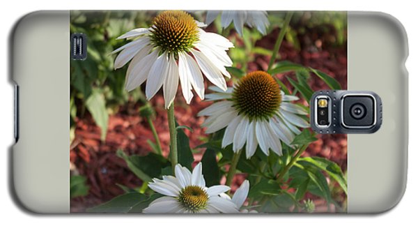 Galaxy S5 Case featuring the photograph White Echinacea In Pastel by Suzanne Gaff