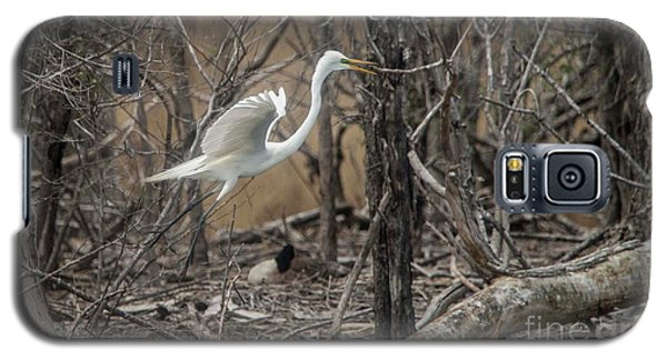 Galaxy S5 Case featuring the photograph White Egret by David Bearden