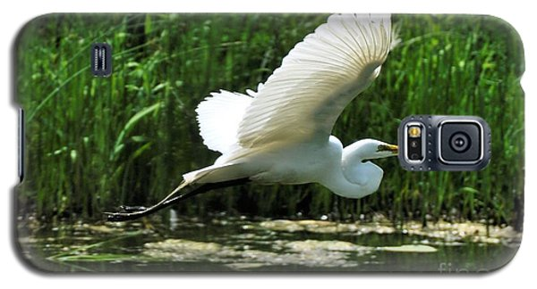 White Egret In Flight Galaxy S5 Case