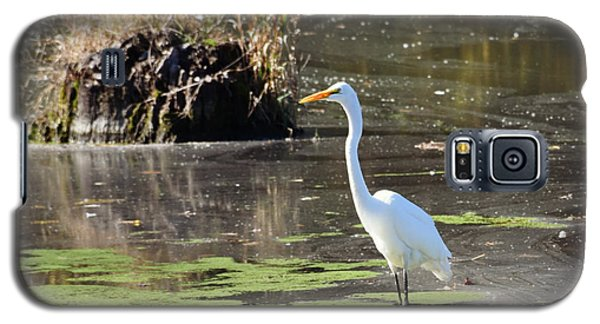 White Egret In The Shallows Galaxy S5 Case