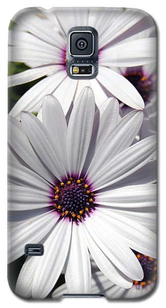 White Flower 1 Galaxy S5 Case