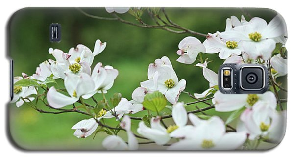 White Flowering Dogwood Galaxy S5 Case