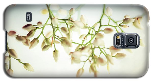 Galaxy S5 Case featuring the photograph White Flowers by Bobby Villapando