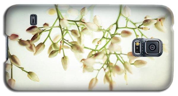 White Flowers Galaxy S5 Case