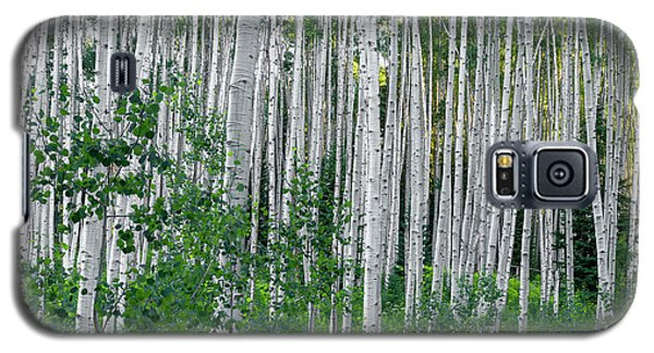Galaxy S5 Case featuring the photograph White Forest by Tim Reaves