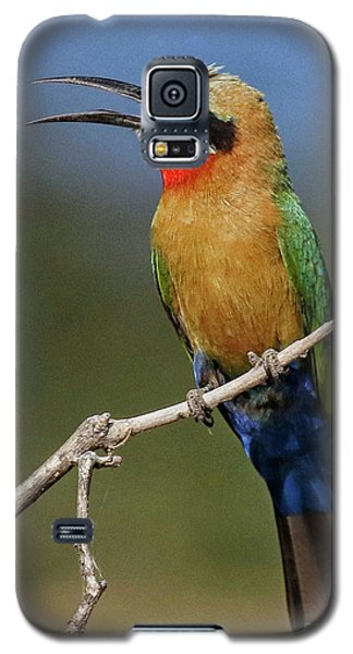 White Fronted Bee-eater Galaxy S5 Case by Myrna Bradshaw