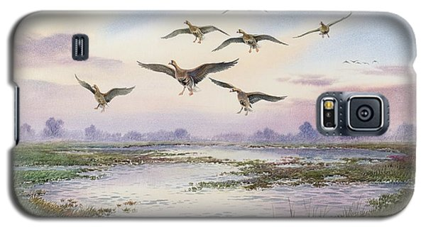 White-fronted Geese Alighting Galaxy S5 Case by Carl Donner