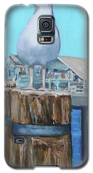 White Gull Galaxy S5 Case