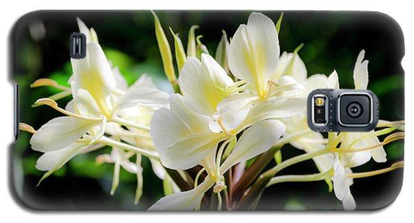 White Hawaiian Flowers Galaxy S5 Case