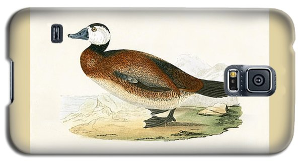 White Headed Duck Galaxy S5 Case by English School