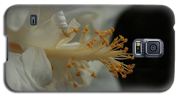 White Hibiscus Galaxy S5 Case
