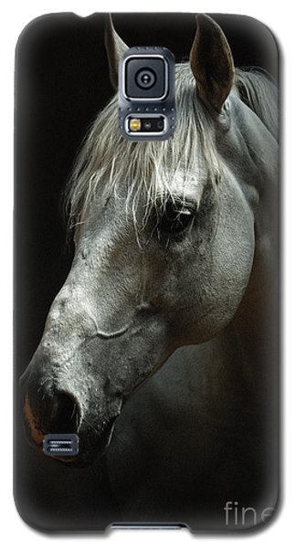 White Horse Portrait Galaxy S5 Case