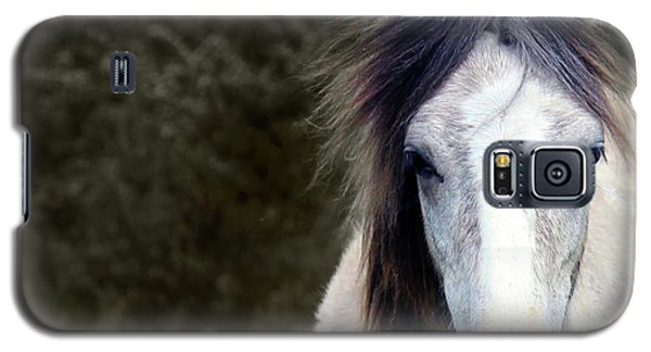 Galaxy S5 Case featuring the photograph White Horse by Sebastian Mathews Szewczyk