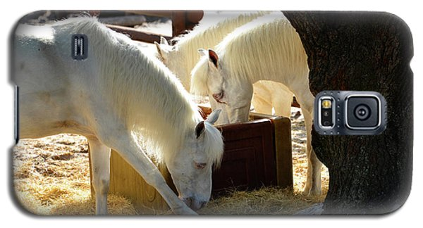 Galaxy S5 Case featuring the photograph White Horses Feeding by David Lee Thompson