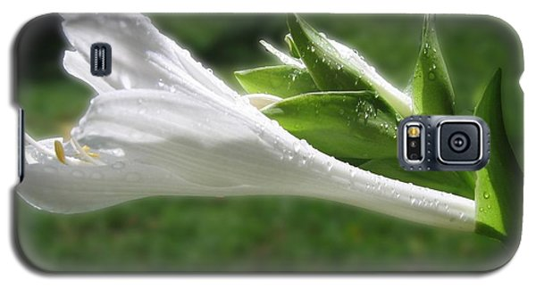 Galaxy S5 Case featuring the photograph White Hosta Flower 46 by Maciek Froncisz