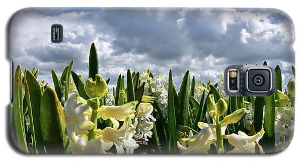 White Hyacinth Field Galaxy S5 Case by Mihaela Pater
