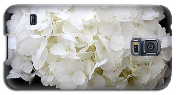 White Hydrangea Galaxy S5 Case