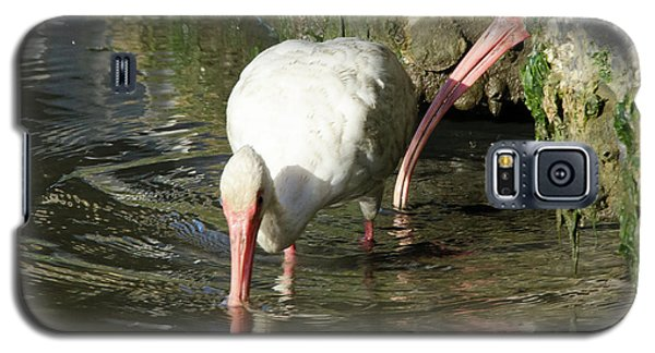 White Ibis Couple Galaxy S5 Case by George Randy Bass