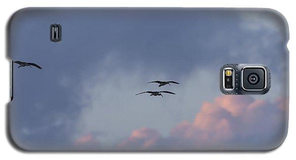 White Ibis In Flight At Sunset Galaxy S5 Case