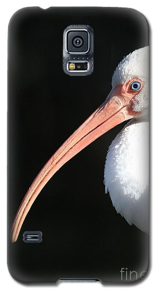 White Ibis Profile Galaxy S5 Case by Carol Groenen
