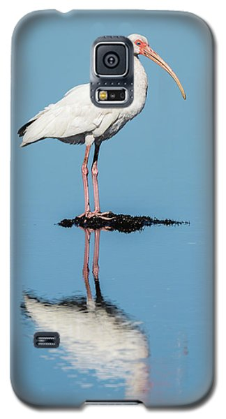 White Ibis Reflection Galaxy S5 Case