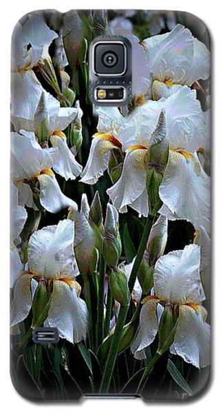 White Iris Garden Galaxy S5 Case by Sherry Hallemeier