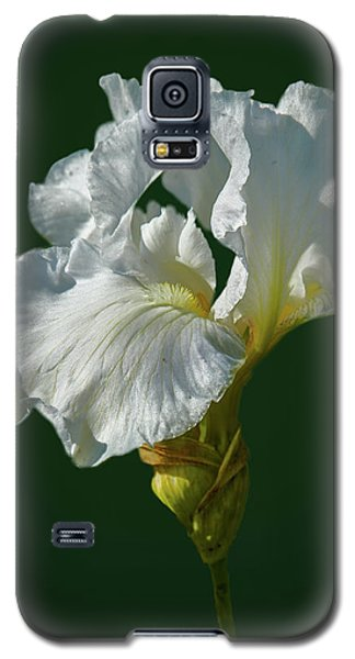 White Iris On Dark Green #g0 Galaxy S5 Case