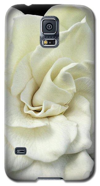 White Knight Galaxy S5 Case