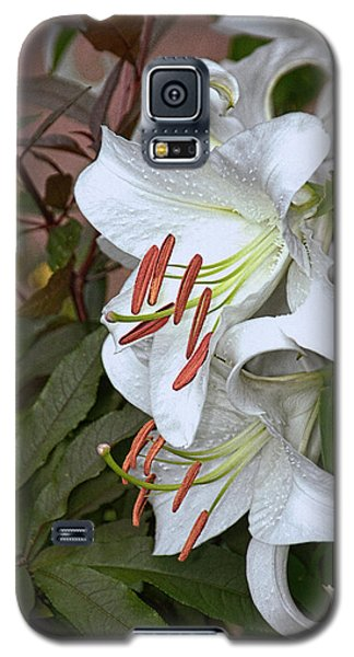 White Lily Galaxy S5 Case by Dennis Lundell