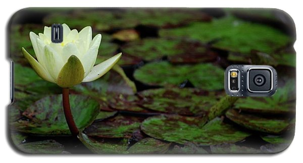 White Lily In The Pond Galaxy S5 Case