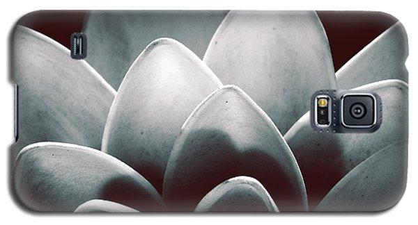 White Lotus At Dawn Galaxy S5 Case