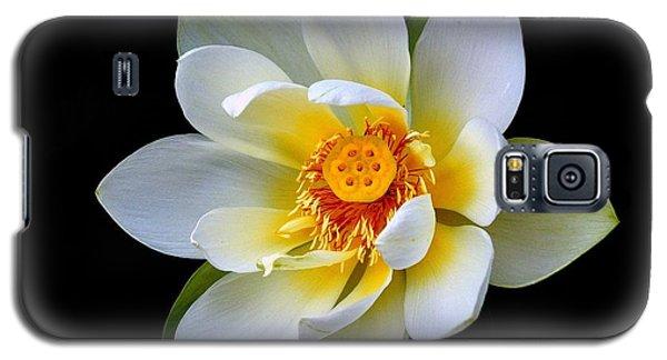 White Lotus Flower Galaxy S5 Case by Lisa L Silva