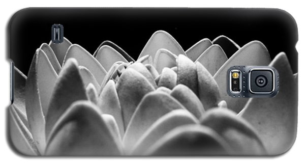 White Lotus In Night Galaxy S5 Case