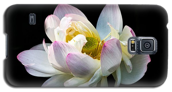 White Lotus Galaxy S5 Case