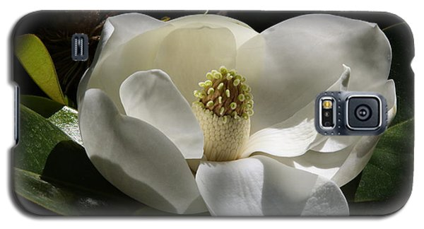 White Magnolia Flower Galaxy S5 Case