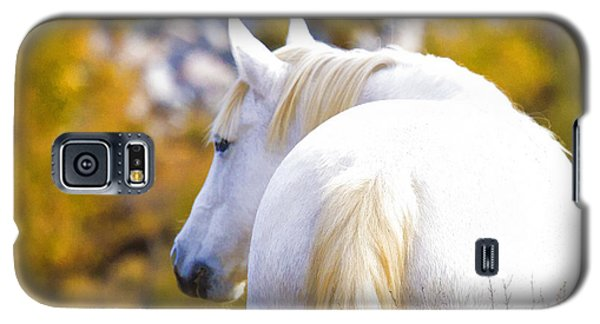 White Mustang Mare Galaxy S5 Case