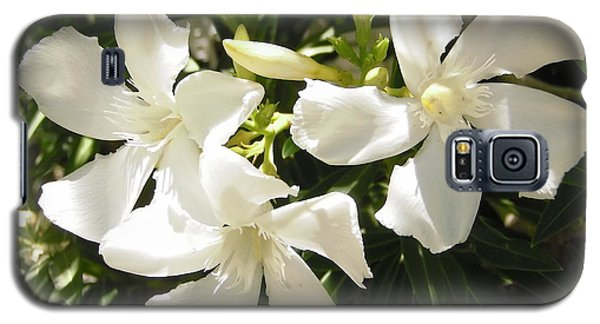 White Oleander Flowers Galaxy S5 Case by Stephanie Moore