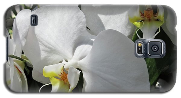 White Orchid Bloom Duo Galaxy S5 Case