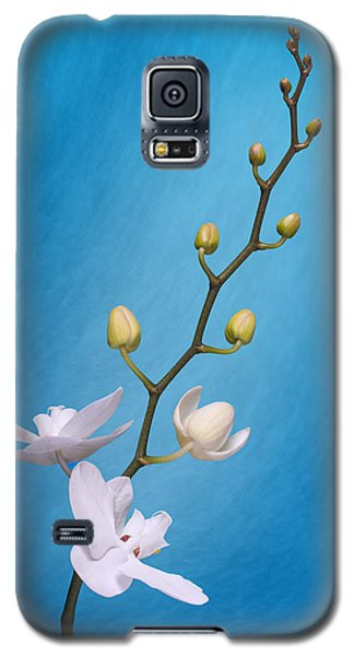White Orchid Buds On Blue Galaxy S5 Case by Tom Mc Nemar