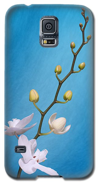 Orchid Galaxy S5 Case - White Orchid Buds On Blue by Tom Mc Nemar