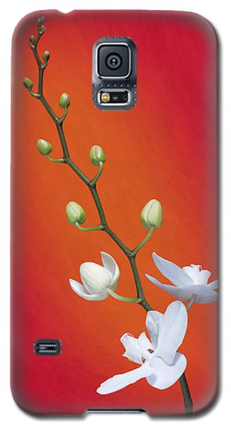 White Orchid Buds On Red Galaxy S5 Case by Tom Mc Nemar