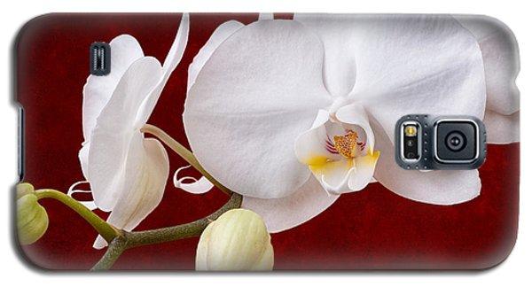 White Orchid Closeup Galaxy S5 Case by Tom Mc Nemar