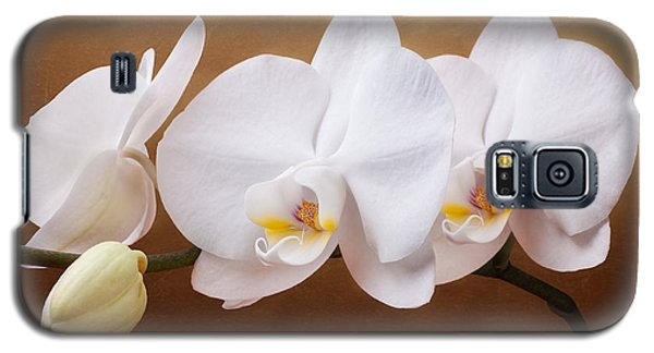 White Orchid Flowers And Bud Galaxy S5 Case