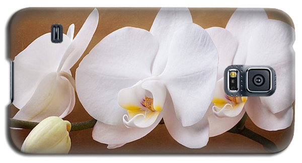 Orchid Galaxy S5 Case - White Orchid Flowers And Bud by Tom Mc Nemar