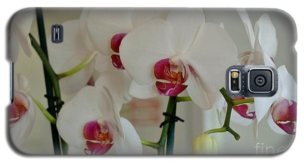 White Orchid Mothers Day Galaxy S5 Case by Marsha Heiken